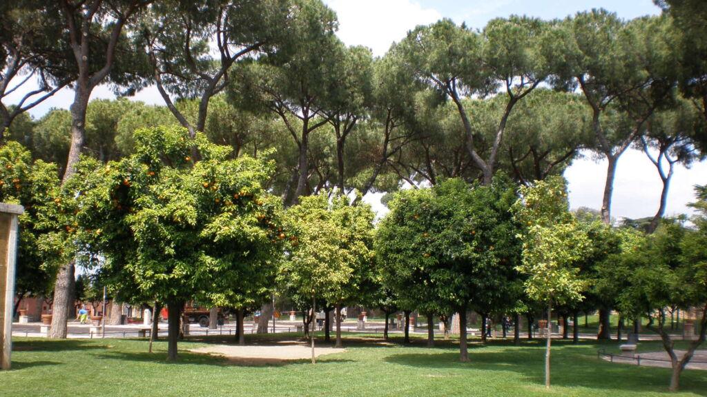 Colle aventino la leggenda di parco savello newsgo - Giardino degli aranci frattamaggiore ...