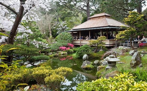 Venerd 30 ottobre riapre il giardino dell 39 istituto for Giardini giapponesi roma